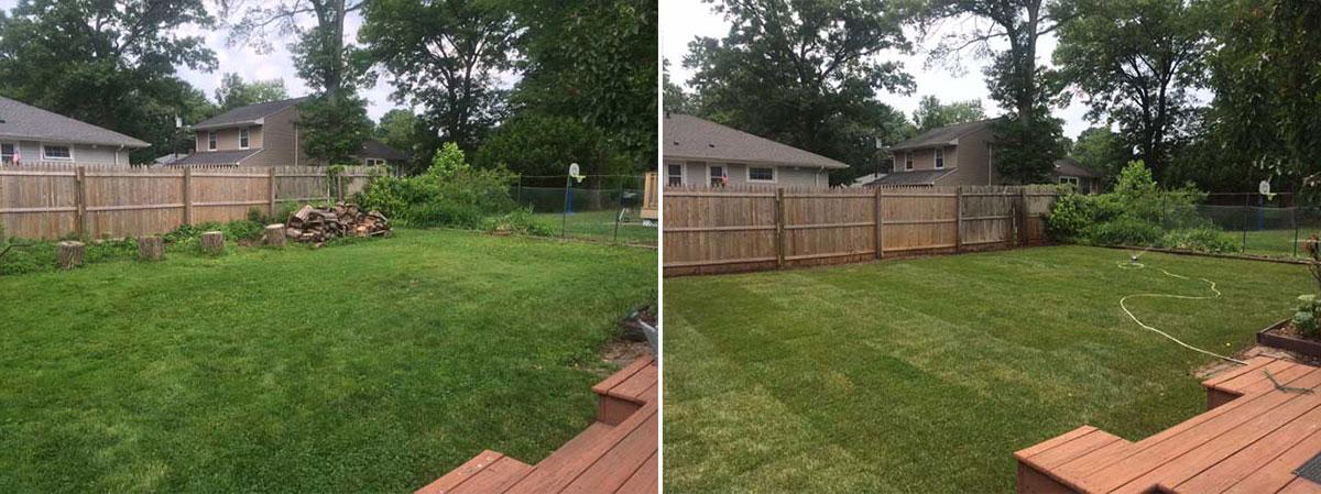 Drainage and Sod Project - Before & After