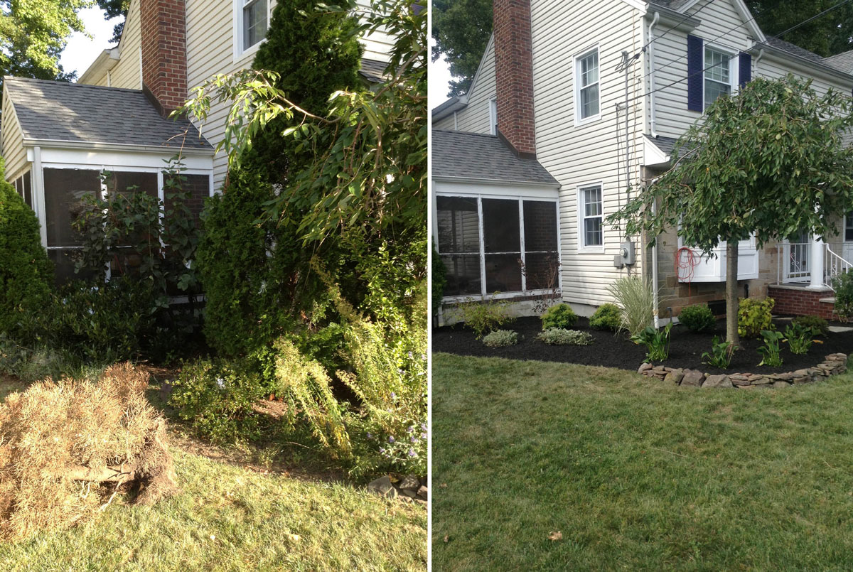 New Front Landscape - Before & After