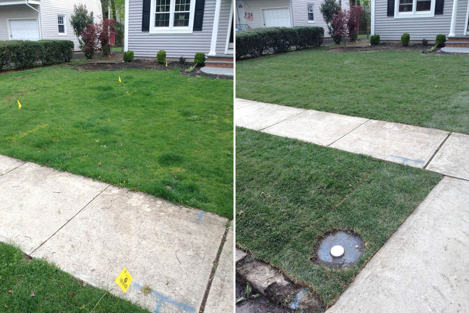 Grading and Sod Landscaping Project - Before & After