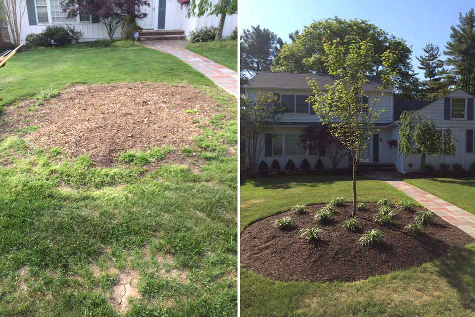 Front Landscape - Before & After