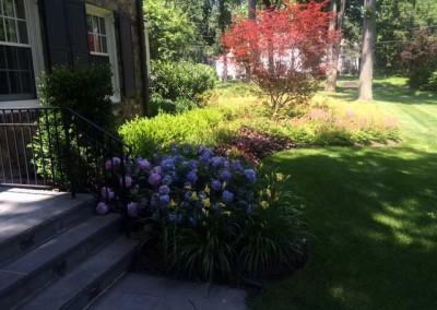 Front Yard Landscape - After